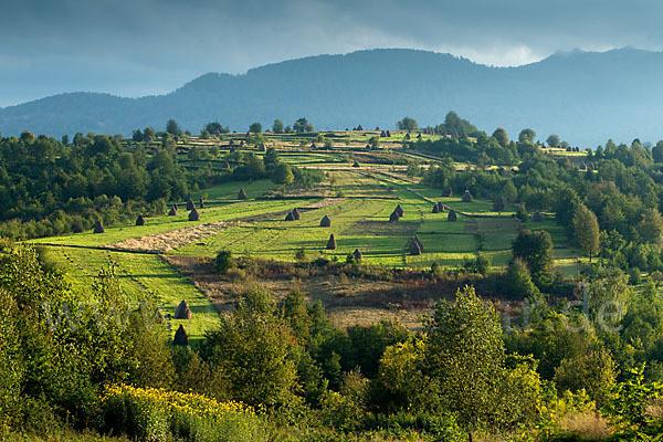 Landschaft In Rumänien  Rumänien Romania aus Landschaft p fokus natur