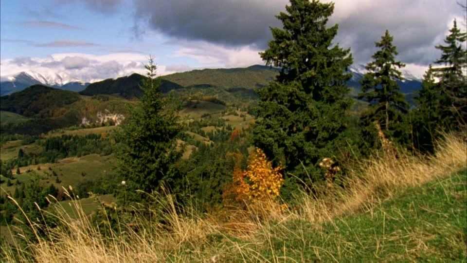 Landschaft In Rumänien  rumania Stock Videos rumania Stock Footage