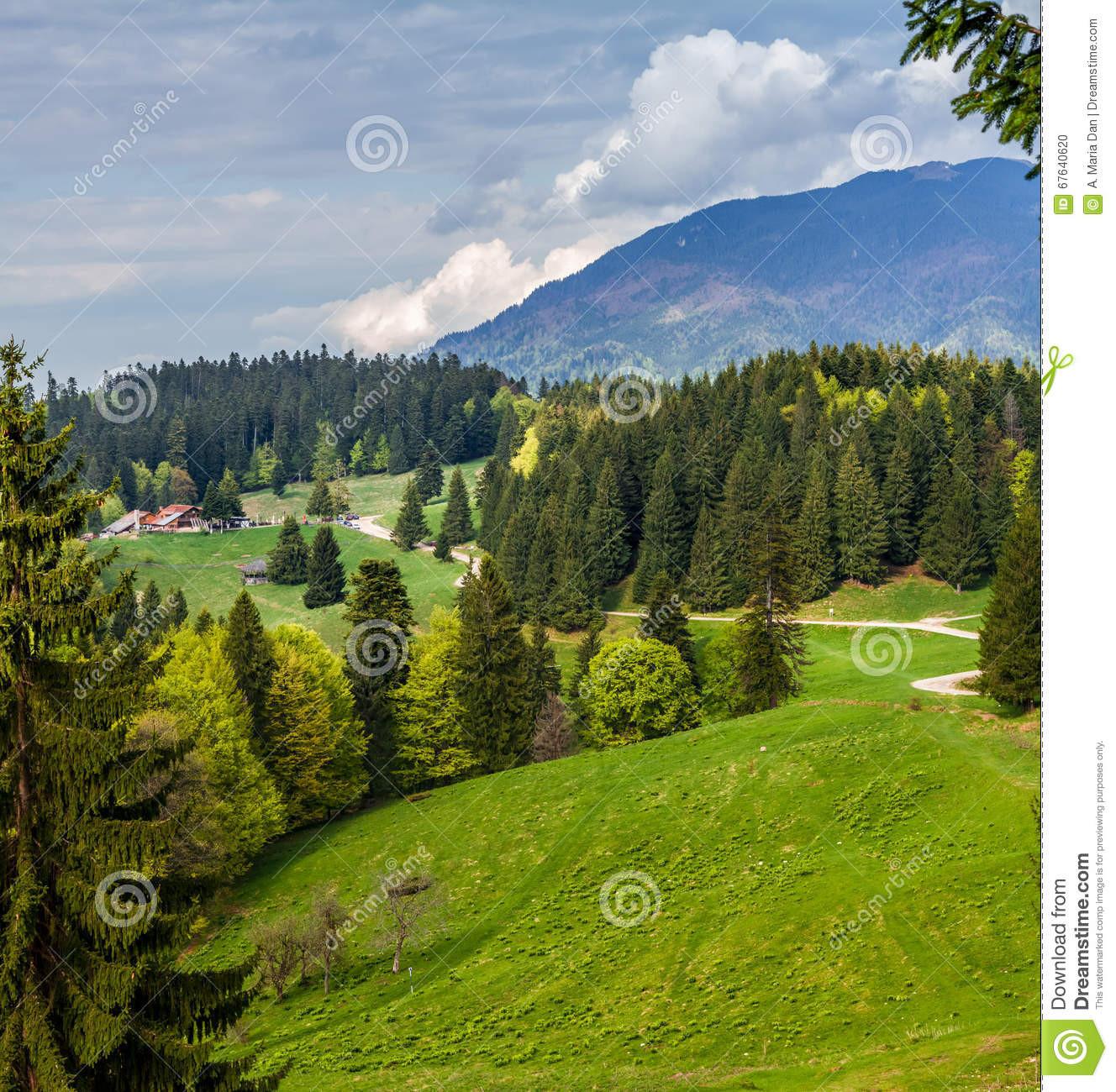 Landschaft In Rumänien  Rumänien Rumänische Landschaft Stockfoto Bild von