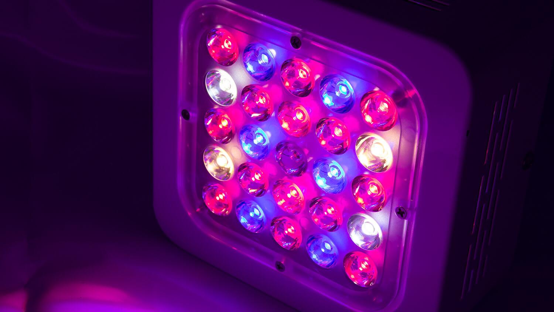 Led Grow Lampe  Top 10 LED Grow Lampen im Test