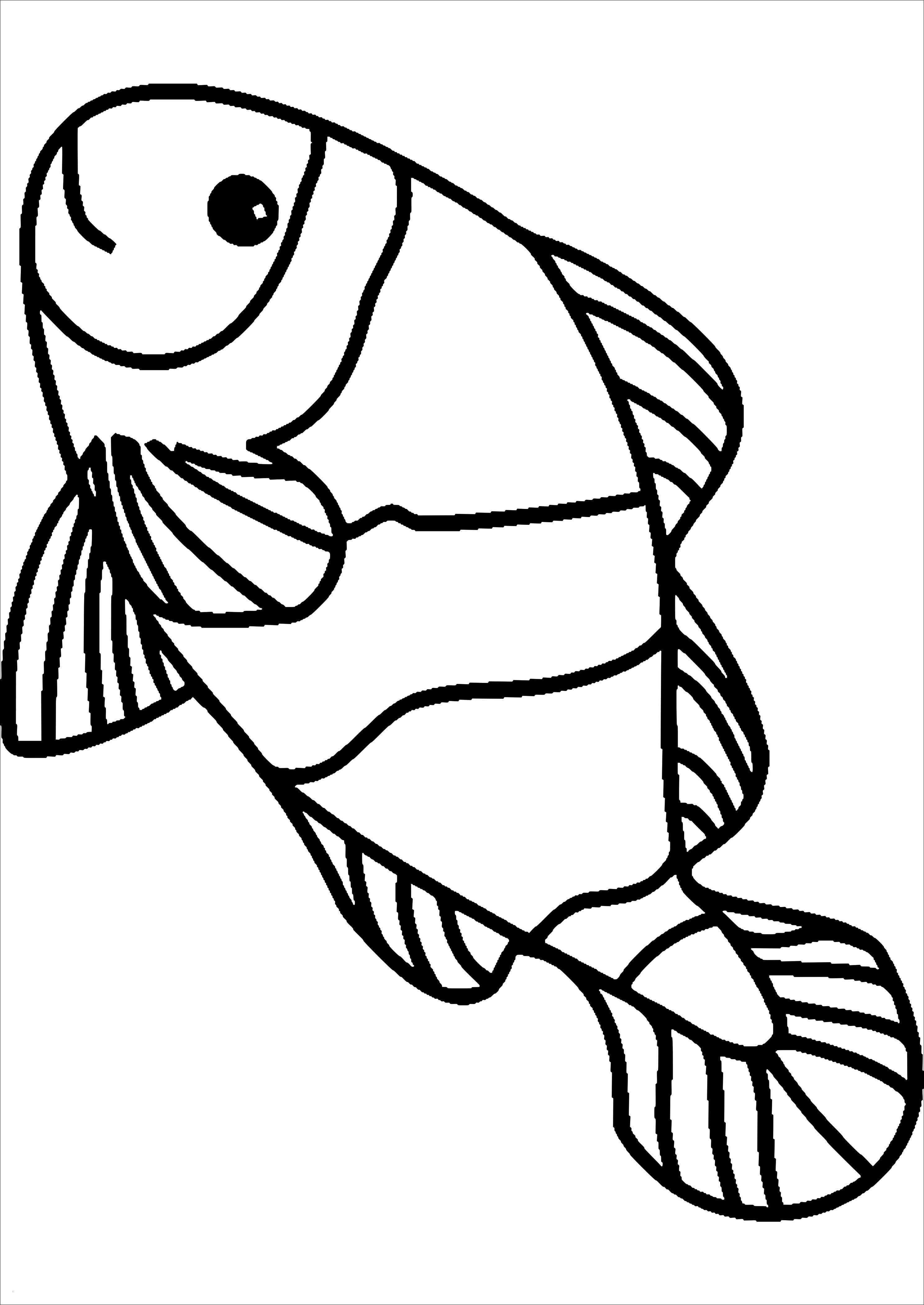 27 gratis malvorlagen fische meer  beste malvorlagen