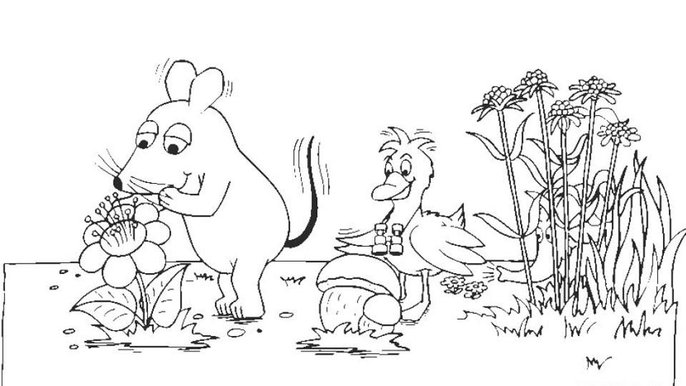 20 besten ideen maus und elefant ausmalbilder  beste
