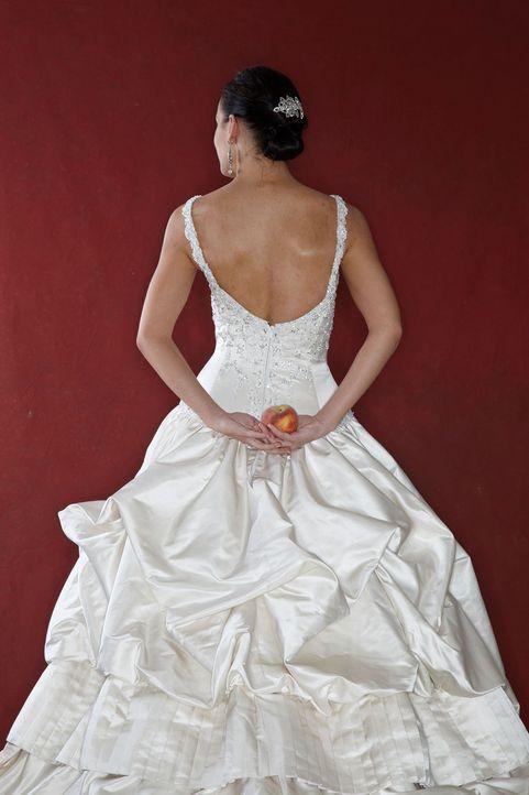 Mein Perfektes Hochzeitskleid  Mein perfektes Hochzeitskleid Mein perfektes