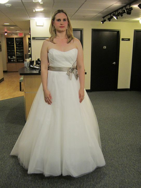 Mein Perfektes Hochzeitskleid  Mein perfektes Hochzeitskleid Dream Dress or Bust sixx