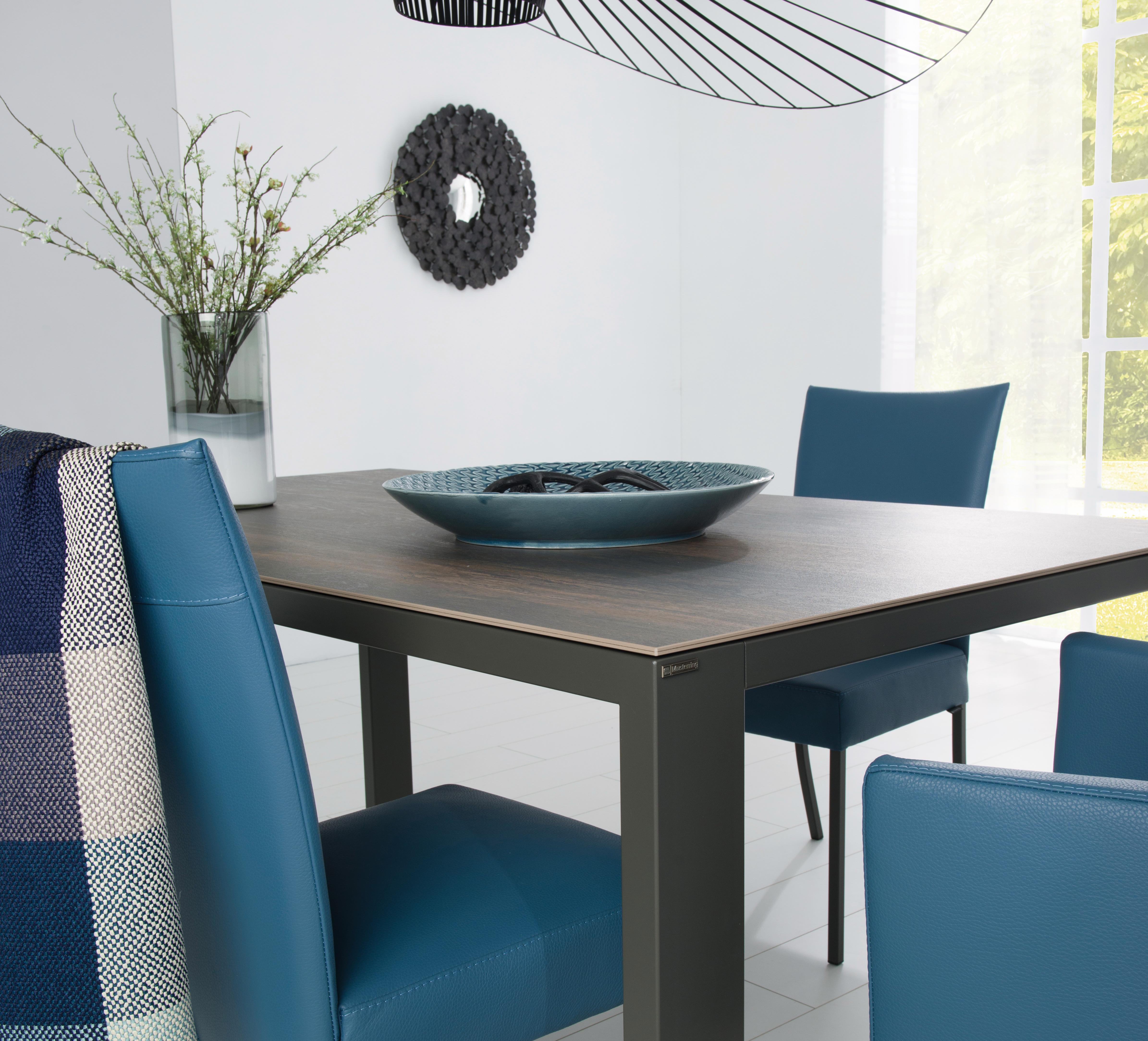 Musterring Stühle  NOVA › Musterring