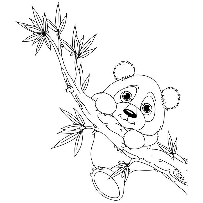 Panda Ausmalbilder  12 dessins de coloriage Panda Géant à imprimer