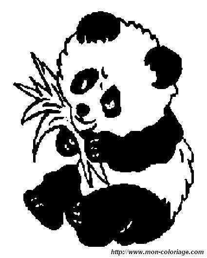Panda Ausmalbilder  Ausmalbilder Panda bild panda6