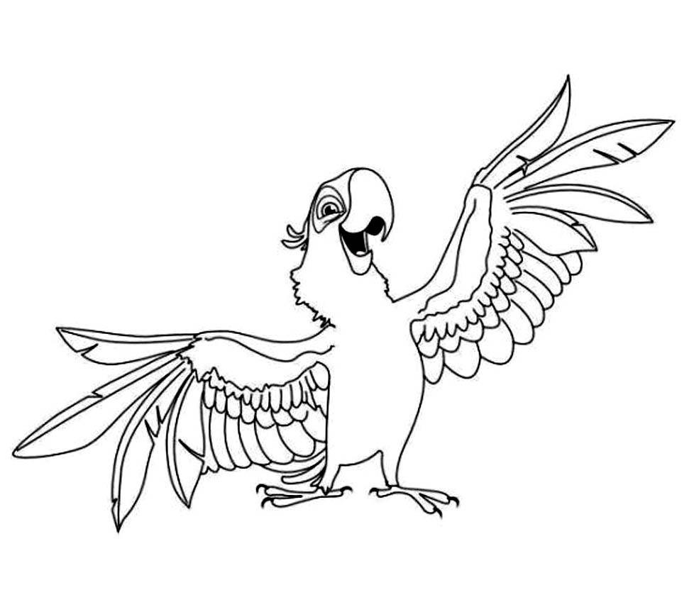 Papagei Ausmalbilder  Ausmalbilder Erwachsene Papagei