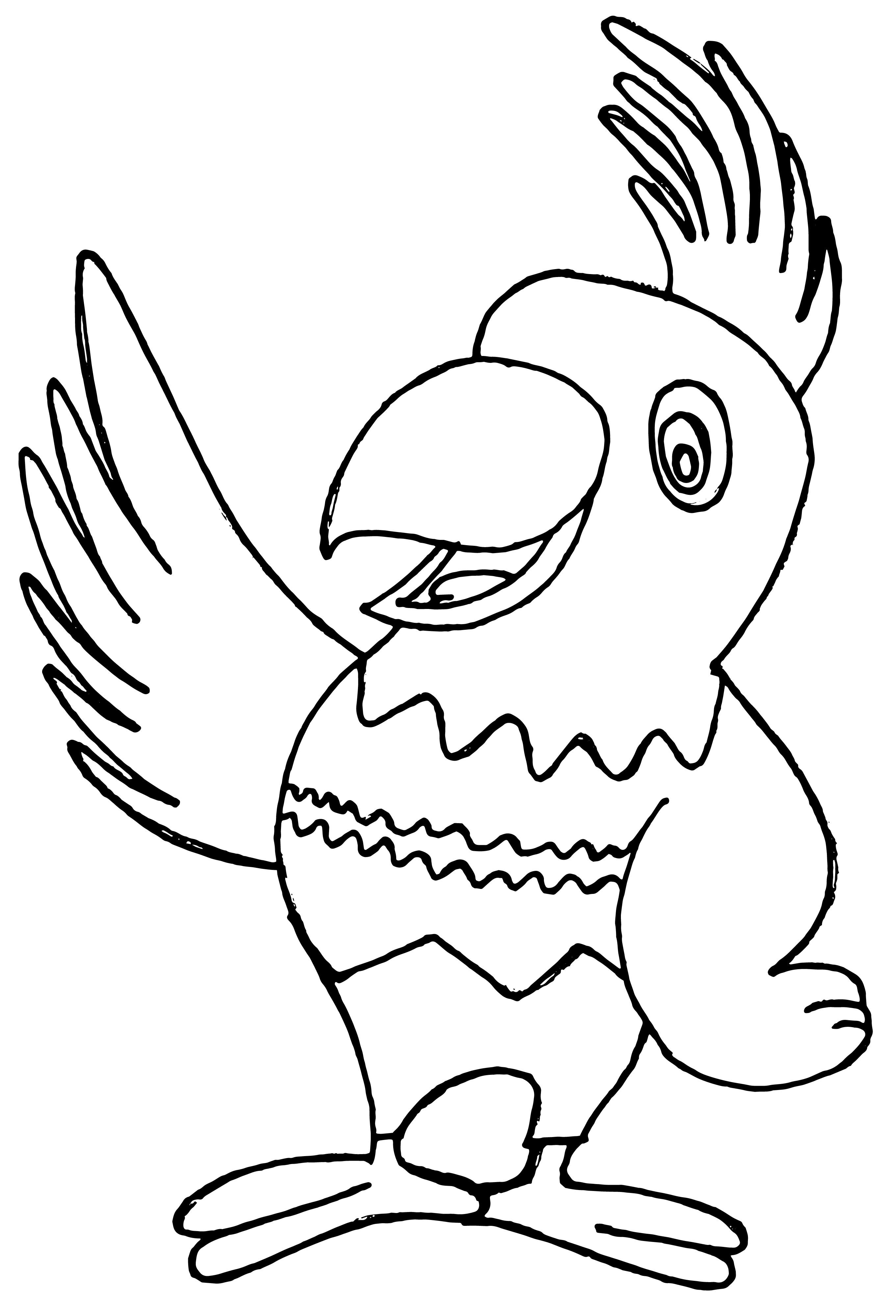Papagei Ausmalbilder  Bunter Papagei Nadines Ausmalbilder