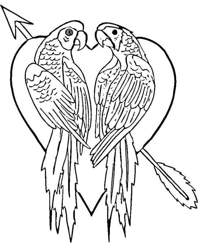 Papagei Ausmalbilder  Papagei Ausmalbilder für Erwachsene kostenlos zum