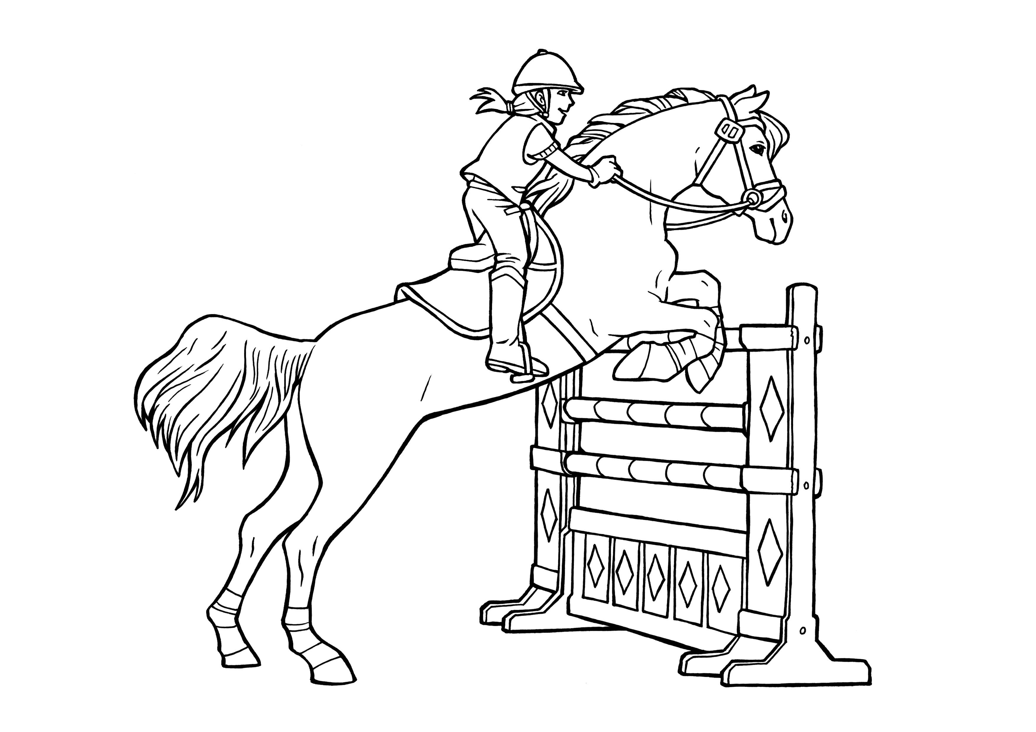 Pferde Ausmalbilder  Ausmalbilder Pferde Turnier Ausmalbilder Pferde