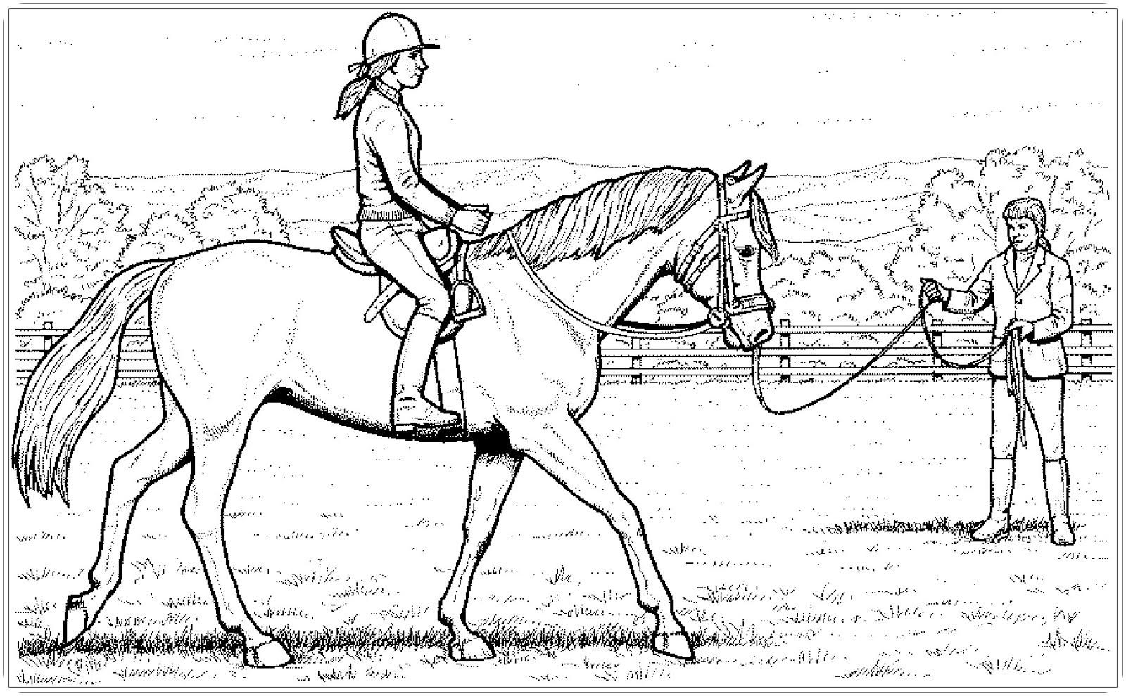 Pferde Ausmalbilder  Ausmalbilder Pferde Mit Reiter Ausmalbilder