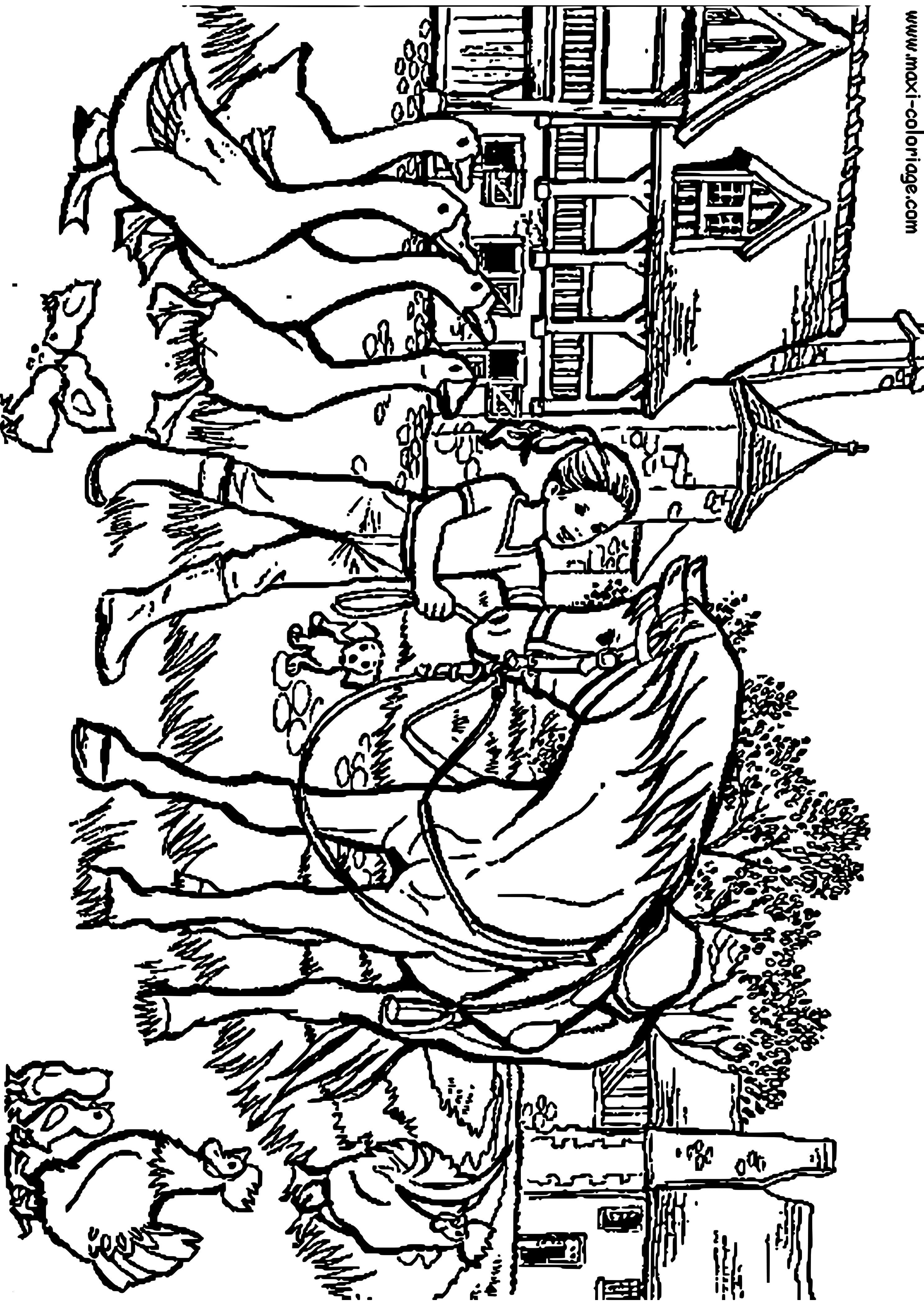 ausmalbilder pferde springen  morgan horse coloring pages