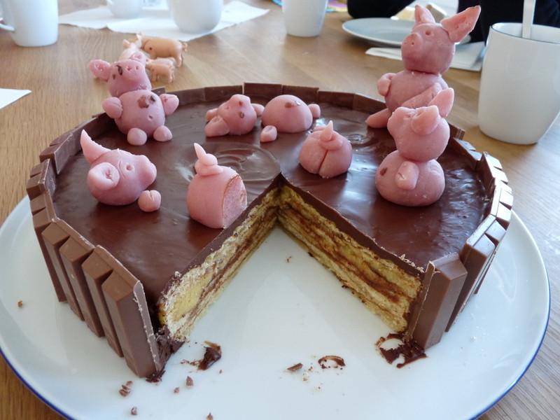 Schweine Kuchen  Foto Schweine in der Suhle Rennrad News