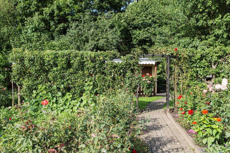 Sichtschutz Im Garten  Sichtschutz Ideen für den Garten