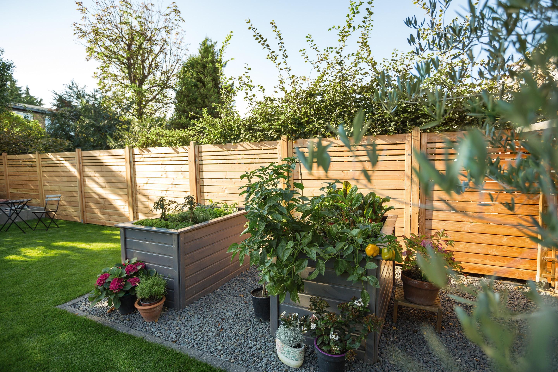 Sichtschutz Im Garten  Sichtschutz für den Garten Infos und Ratgeber