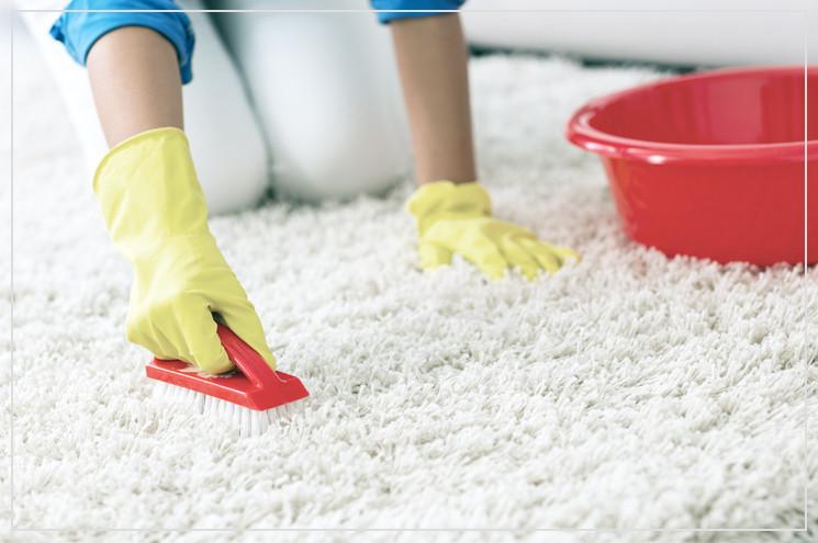 Teppich Reinigen  Teppich reinigen & Flecken entfernen so geht's
