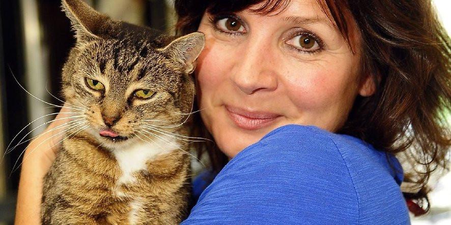 """Tiere Suchen Ein Zu Hause  """"Tiere suchen ein Zuhause"""" Zuschauer lästern über neue"""