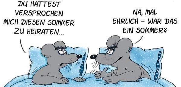 Uli Stein Hochzeit  Cartoon Wedding Uli Stein Hochzeit Pinterest