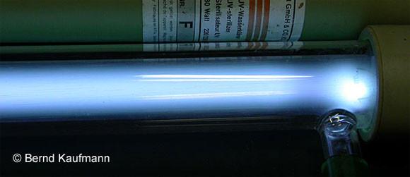 Uv Lampen  UV C Lampen aquamax