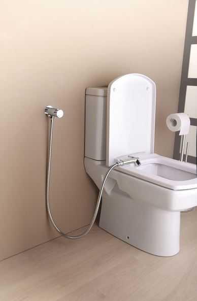 Wc Dusche  Dusch WC Bidet Handbrause ohne Strom