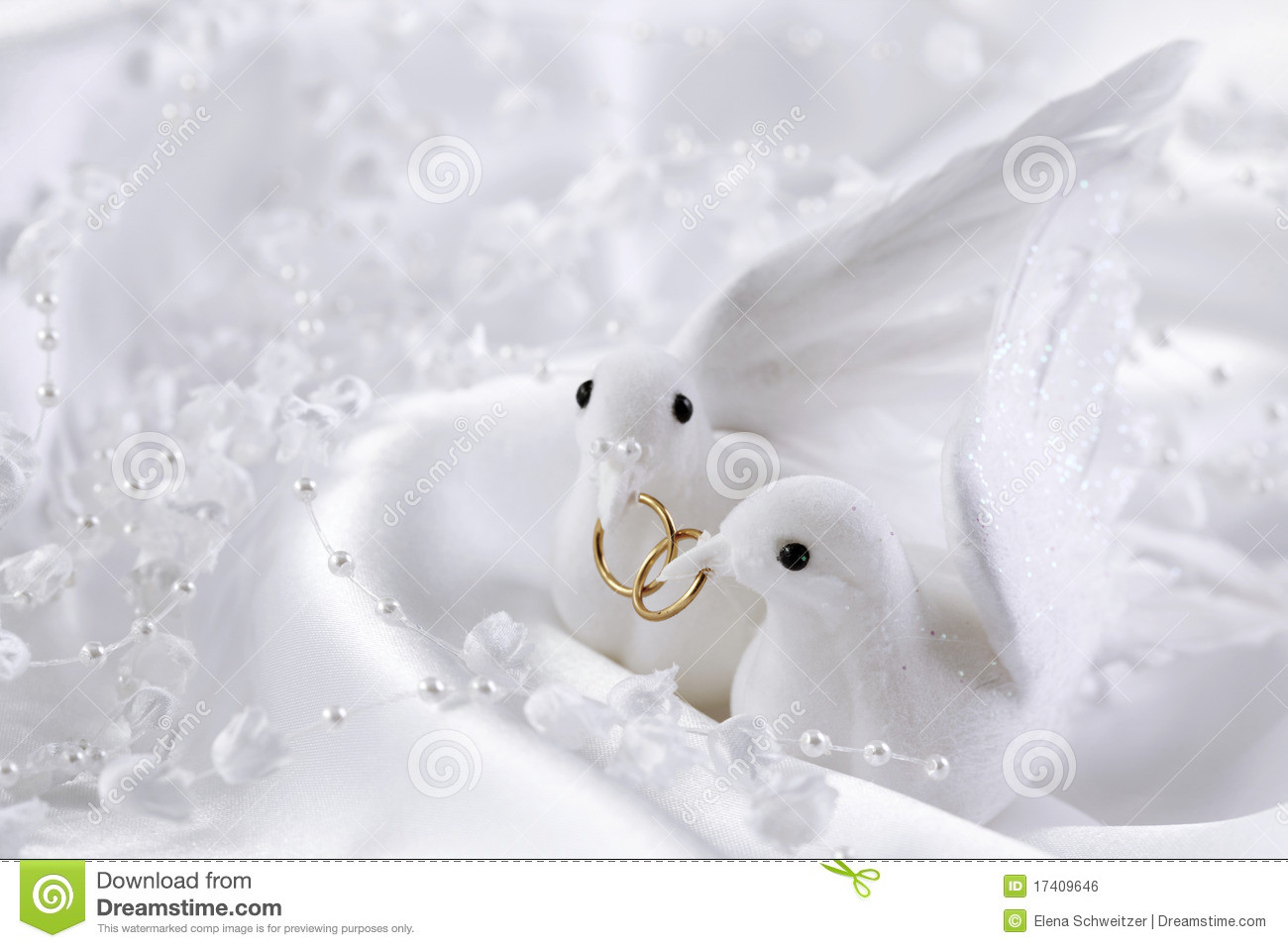 Weiße Tauben Hochzeit  Weiße Tauben stockfoto Bild von tauben paare seide