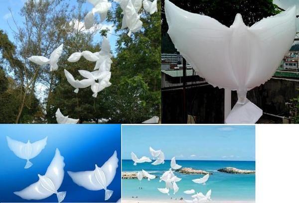 Weiße Tauben Hochzeit  Hochzeit weiße Tauben Luftballon in Berlin Alles für