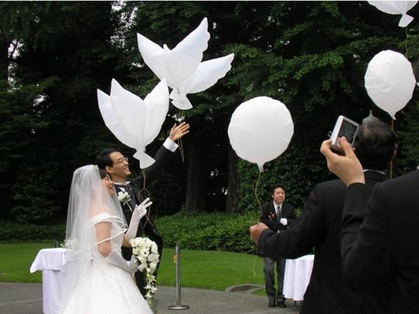 Weiße Tauben Hochzeit  Die weiße Taube als Dekoartikel 24 Bilder Archzine