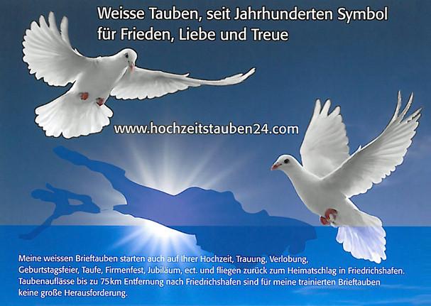 Weiße Tauben Hochzeit  Ihre Hochzeit am Bodensee