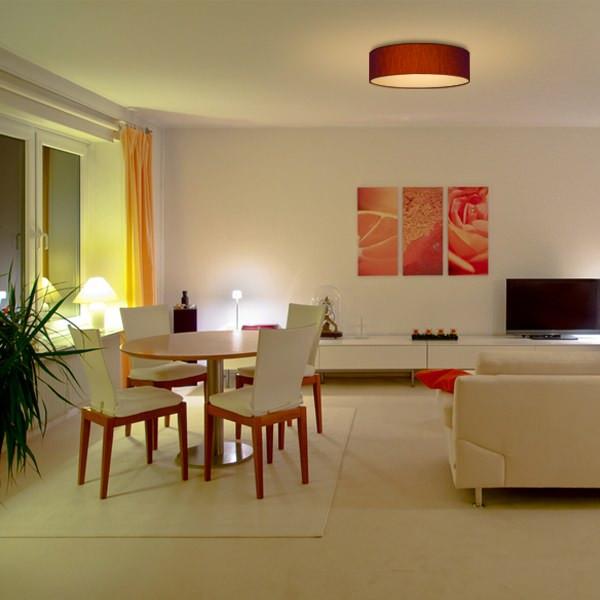 Wohnzimmer Deckenleuchte  Wohnzimmer Deckenleuchte & Deckenlampe