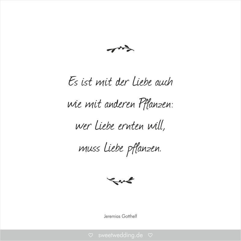 """Zitate Hochzeit Loriot  Trausprüche & Zitate Hochzeit Liebe Glück """"Es ist"""